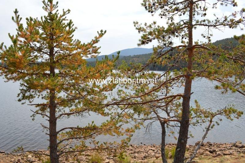 ribnicko-jezero-na-planini-zlatibor-28