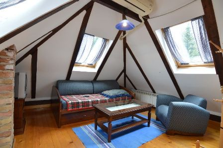 Apartman 4| Vila Wellness sa bazenom Zlatibor