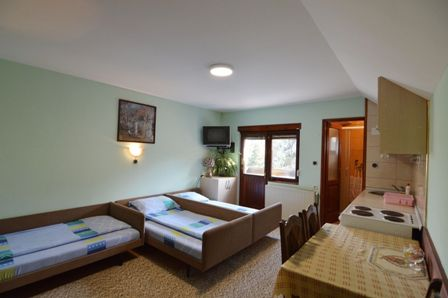Apartman 8 | Smeštaj Vojin Raj